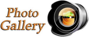 Photo-Gallery-Logo-2013